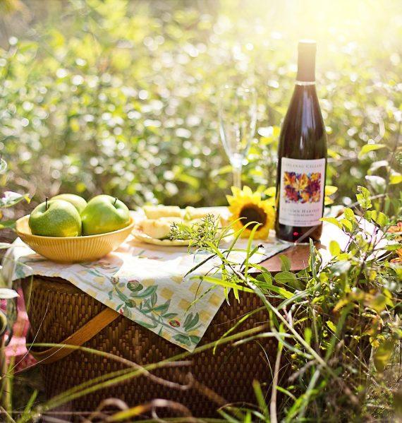 picnic du printemps